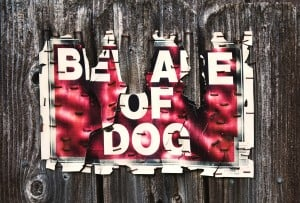 beware of dog old sign wooden fence